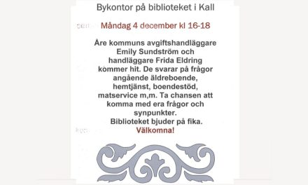 Bykontor Biblioteket Kall 4 dec